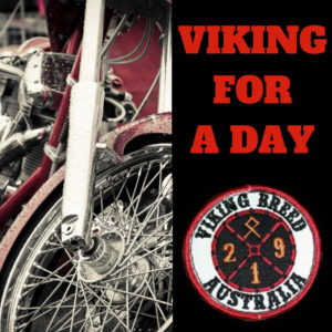 Viking for a Day charity auction